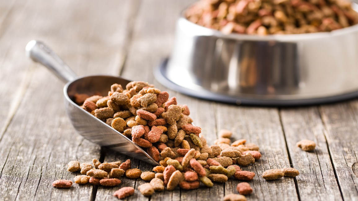 Most Reliable Pet Food That Your Pet Needs.